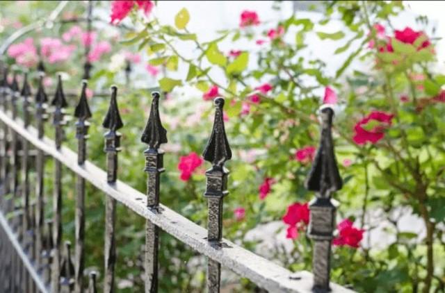 mẫu hàng rào đẹp cho nhà cấp 4 2