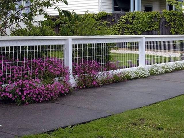 mẫu hàng rào đẹp cho nhà cấp 4 3